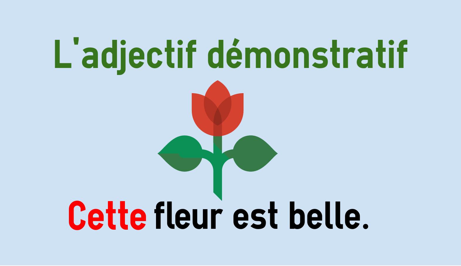 Demonstrativbegleiter im Französischen - ce, cette