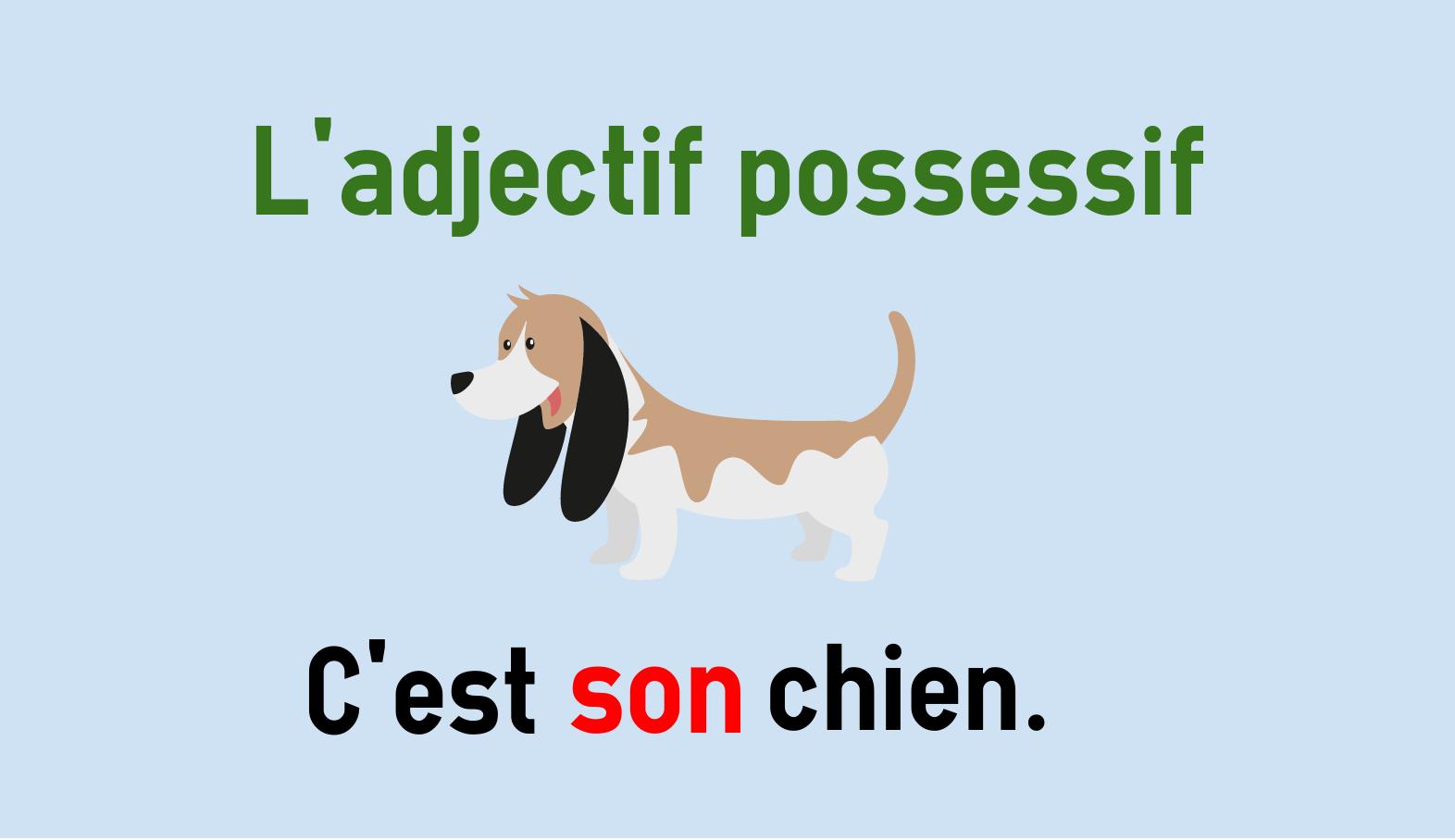 Possessivbegleiter im Französischen - mon, ton