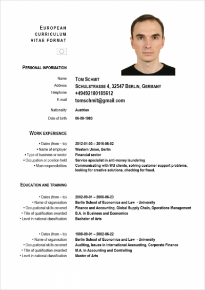 Cv german examples idealstalist cv german examples yelopaper Image collections