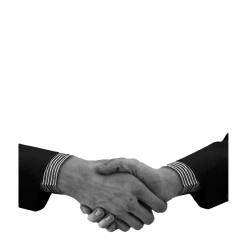 a handshake is the most common way to greet someone in the Netherlands.