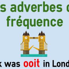 Les Adverbes De Frequence En Neerlandais Altijd Vaak Colanguage