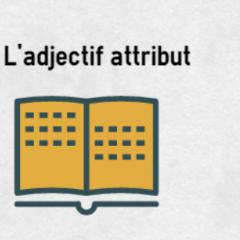 L'adjectif attribut | coLanguage