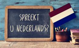 Niederländisch für Anfänger